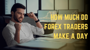 How much do Forex Trader Make a Day