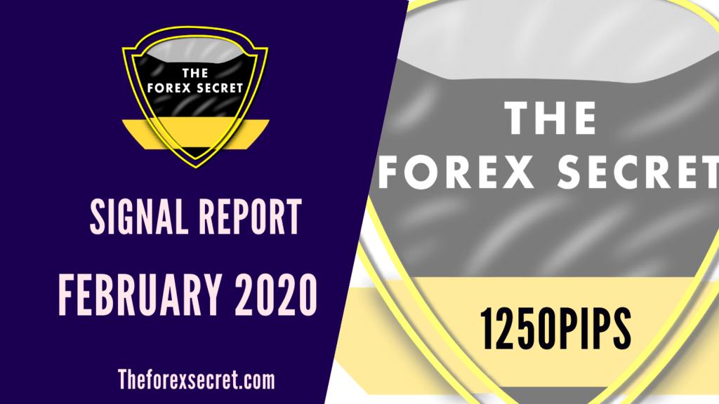 Signal Report February 2020