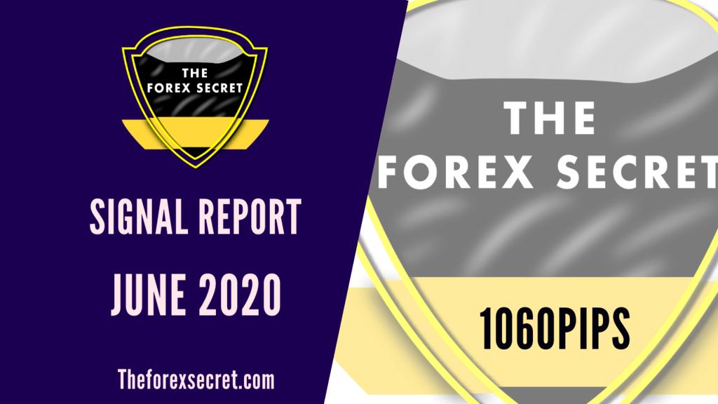 Signal Report 2021